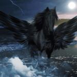 Samhain Gedenkvideo
