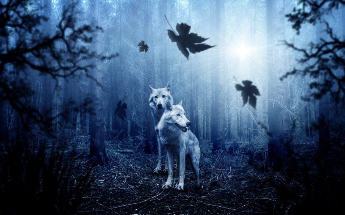 Samhain –wenn die Schleier dünner werden-
