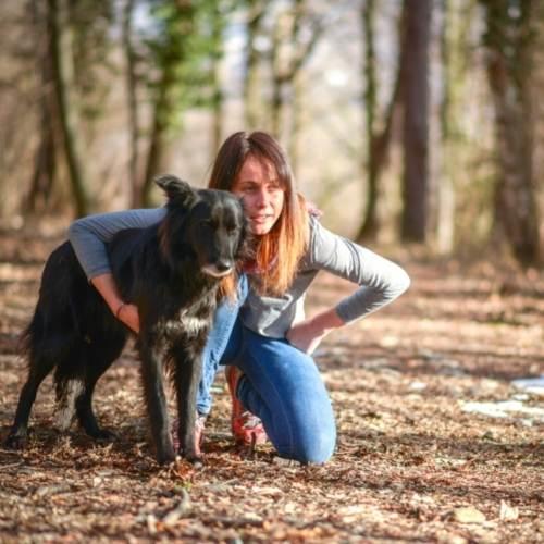 aufbaukurs tierkommunikation frau hund im wald starten die reise