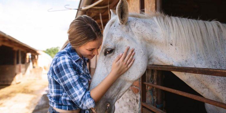 Frau streichelt pferd mit den eigenen tieren sprechen lernen und kommunizieren und energetisch arbeiten