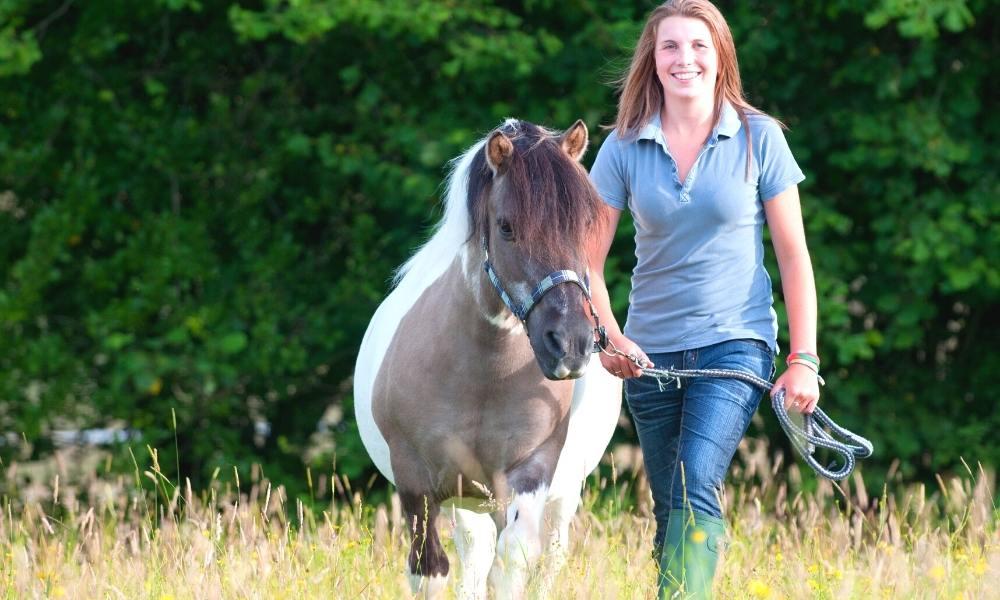 frau pony mit tieren sprechen lernen fuer anfaenger und fortgeschrittene grundkurs aufbaukurse