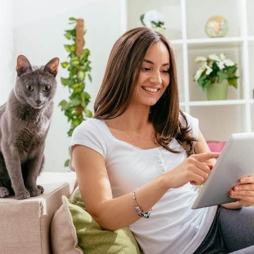 frau tablet katze tierkommunikation eigenes tier neue wege gehen seelenverbindung mensch tier team stärken